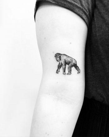Chimpanzee tattoo by Jake Harry Ditchfield