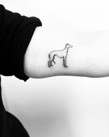 Little Whippet tattoo by Jake Harry Ditchfield