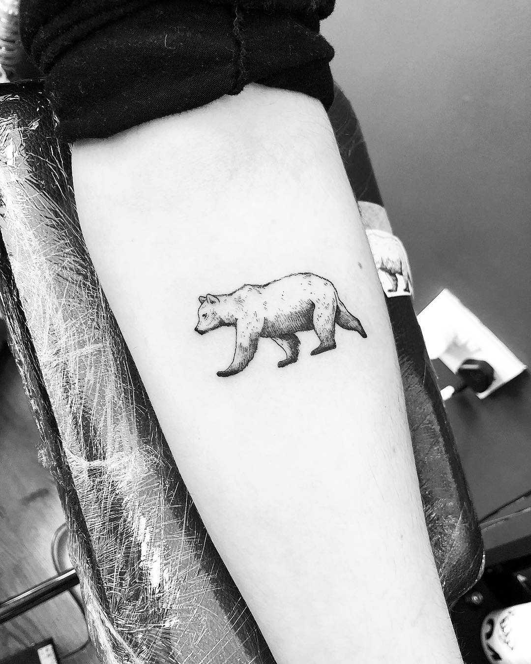 Little brown bear by Jake Harry Ditchfield
