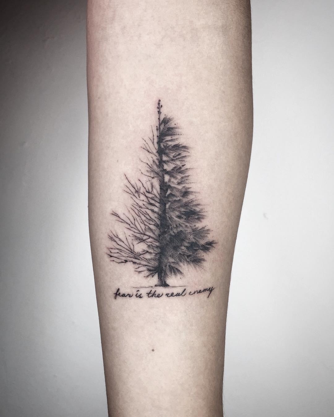 Pine tree by Choco Chiang