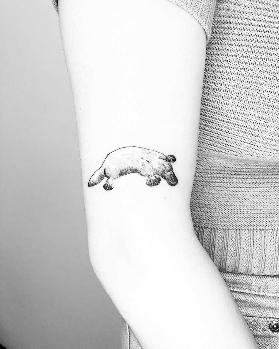 Platypus tattoo by Jake Harry Ditchfield