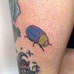 Funky beetle by Dane Nicklas