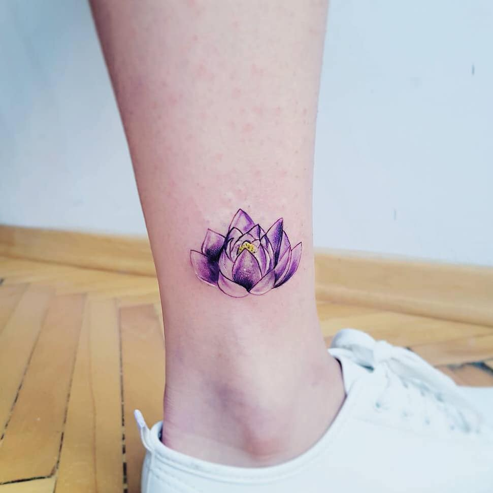 Purple Lotus by Hakan Adik
