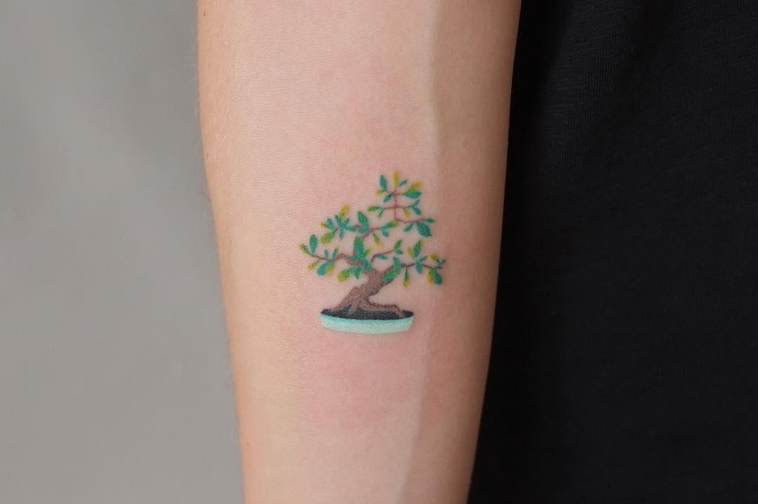 Small bonsai by Yaroslav Putyata
