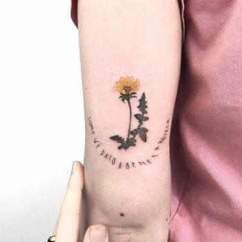 Sonchus tattoo by Marco Sorgato
