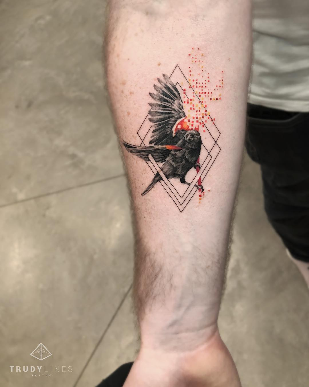 Blackbird by @trudy_lines_tattoo