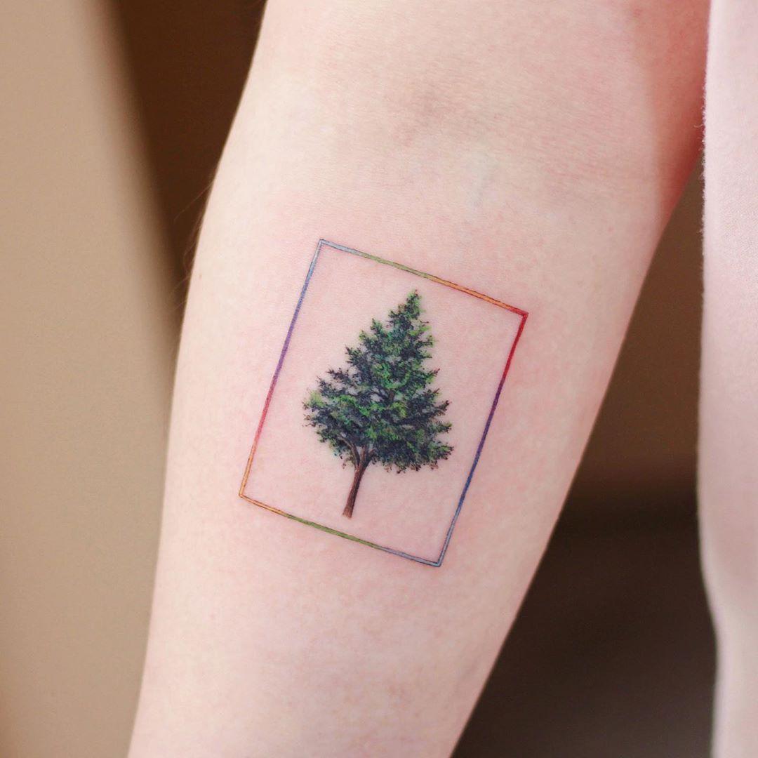 Framed tree by @vane.tattoo_