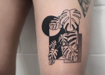 Monstera scene by @charley_gerardin