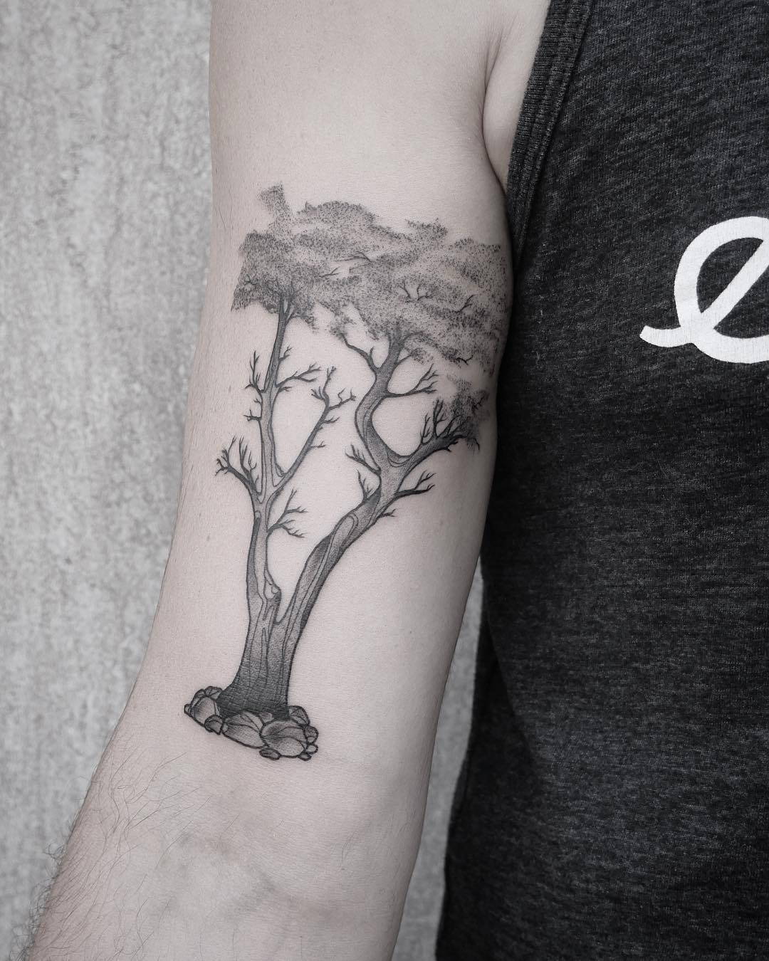 Monterey Cypress tattoo by @patcrump