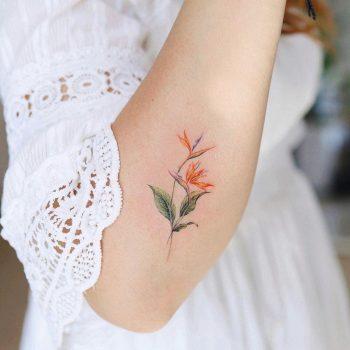 Bird of paradise flower tattoo by @vane.tattoo_