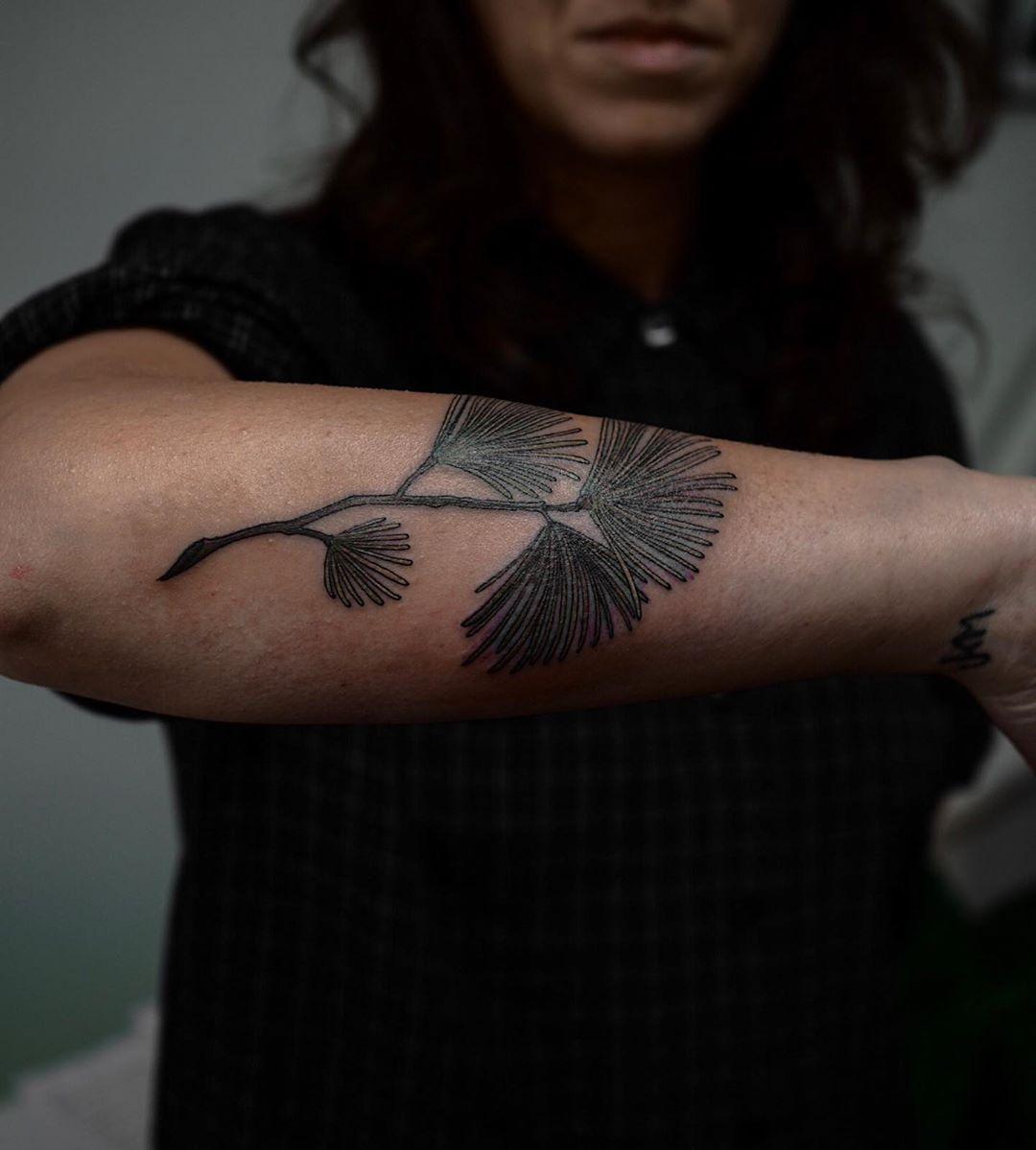 Eastern pine tattoo by @sophiabaughan