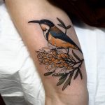 Grevillea and Eastern spinebill tattoo by @sophiabaughan