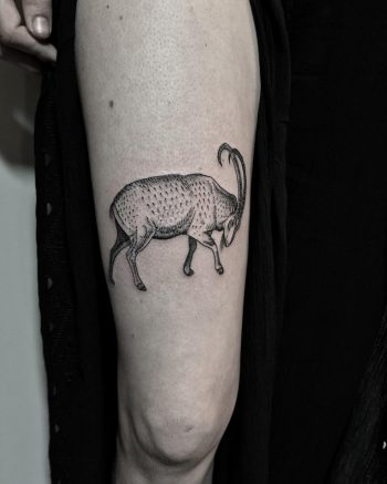 Ibex tattoo by @justinoliviertattoo
