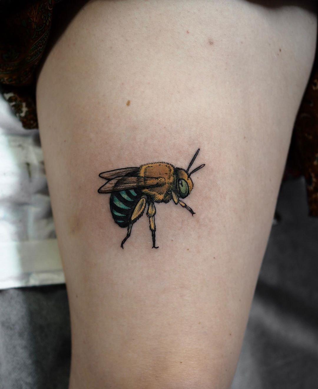 Native Australian Blue banded Bee tattoo by @sophiabaughan