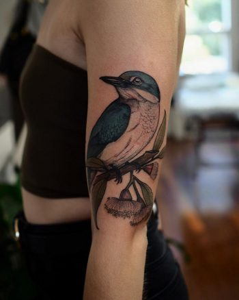 Sacred Kingfisher tattoo by @sophiabaughan