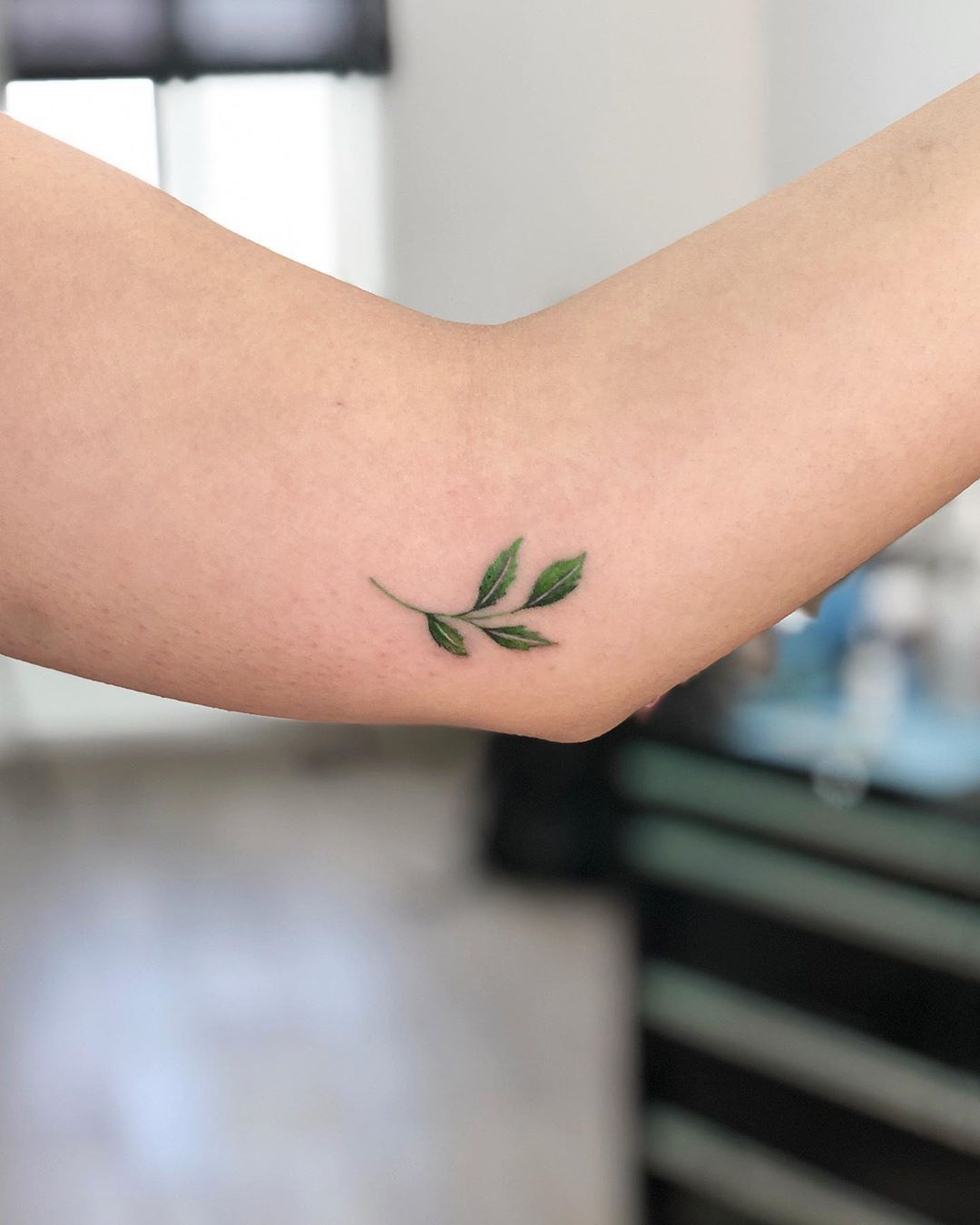 Tiny leaves by @soychapa