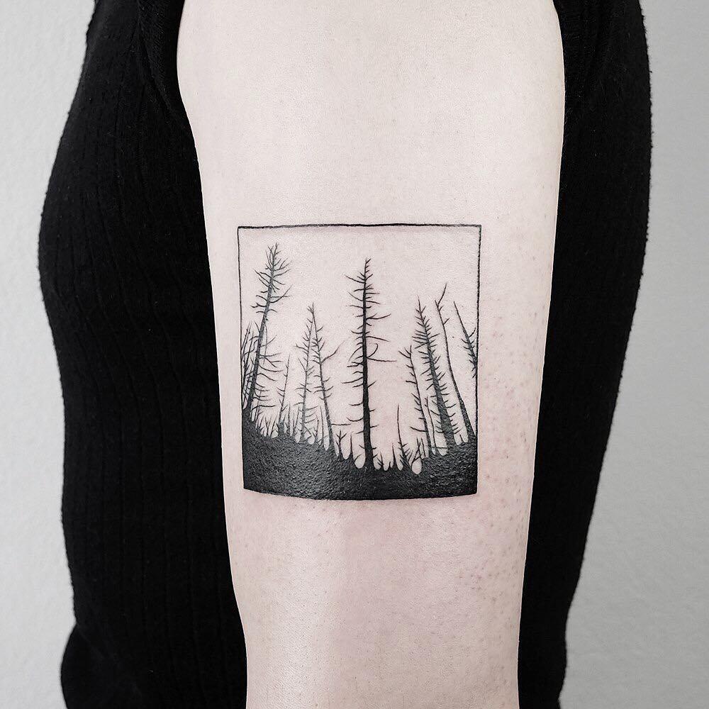 Burnt forest by @mateutsa