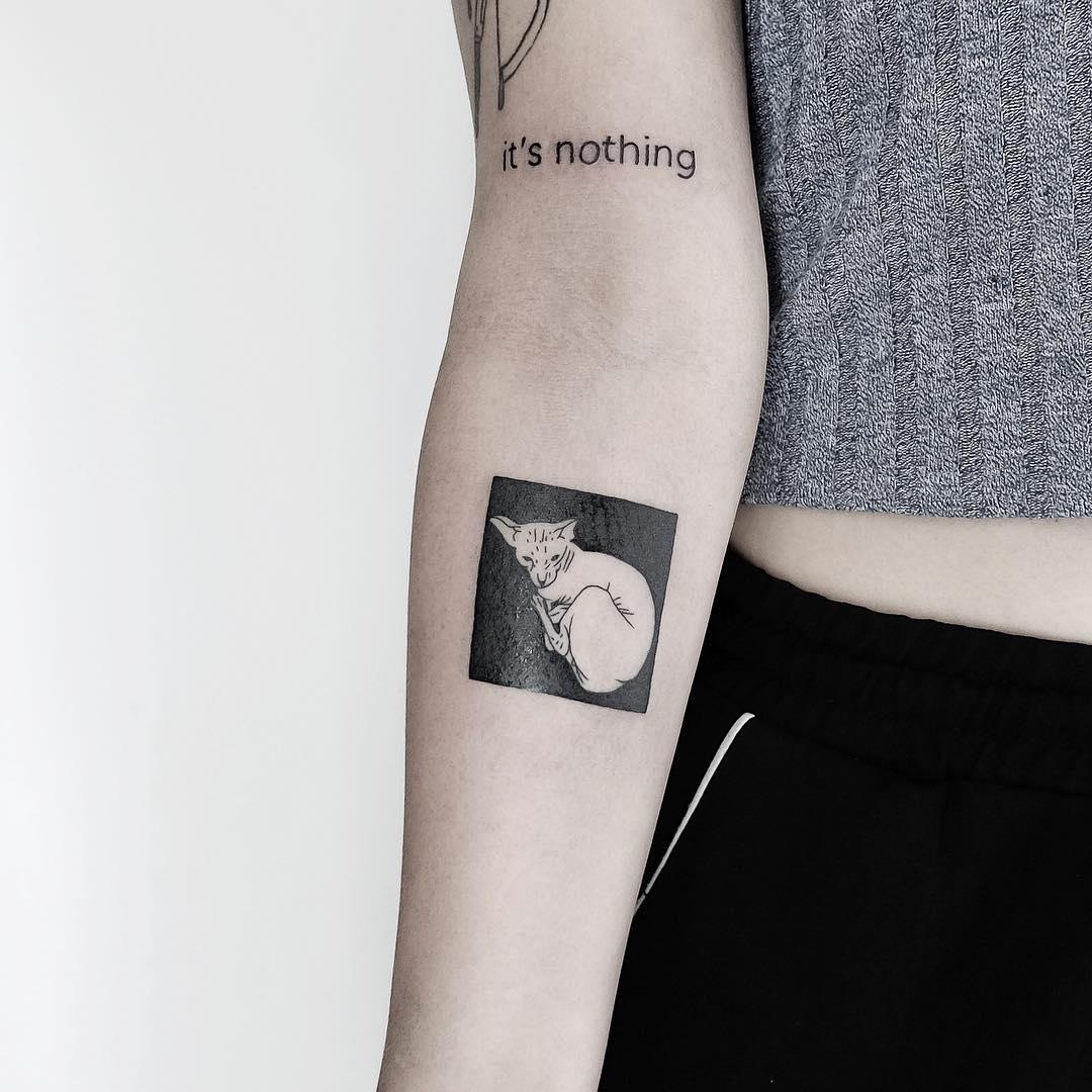 White and black cat by @mateutsa