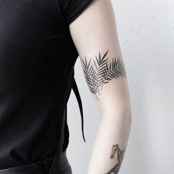 Palm leaves by @mateutsa